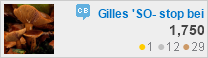 profile for Gilles 'SO- stop being evil' at Community Building